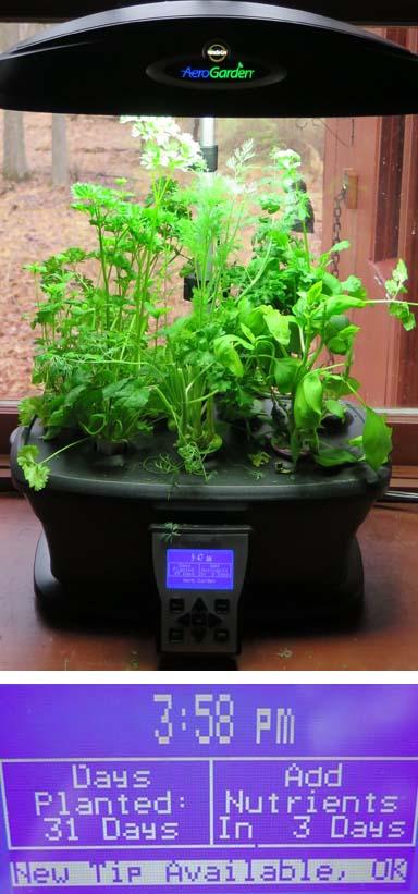 A Smart Garden