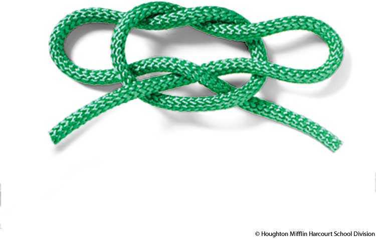 bowknot