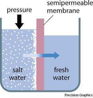 Osmosis Definition Reverse osmosis...